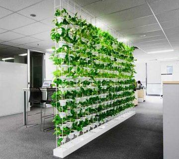 دیوارپوش گیاهی در دکوراسیون
